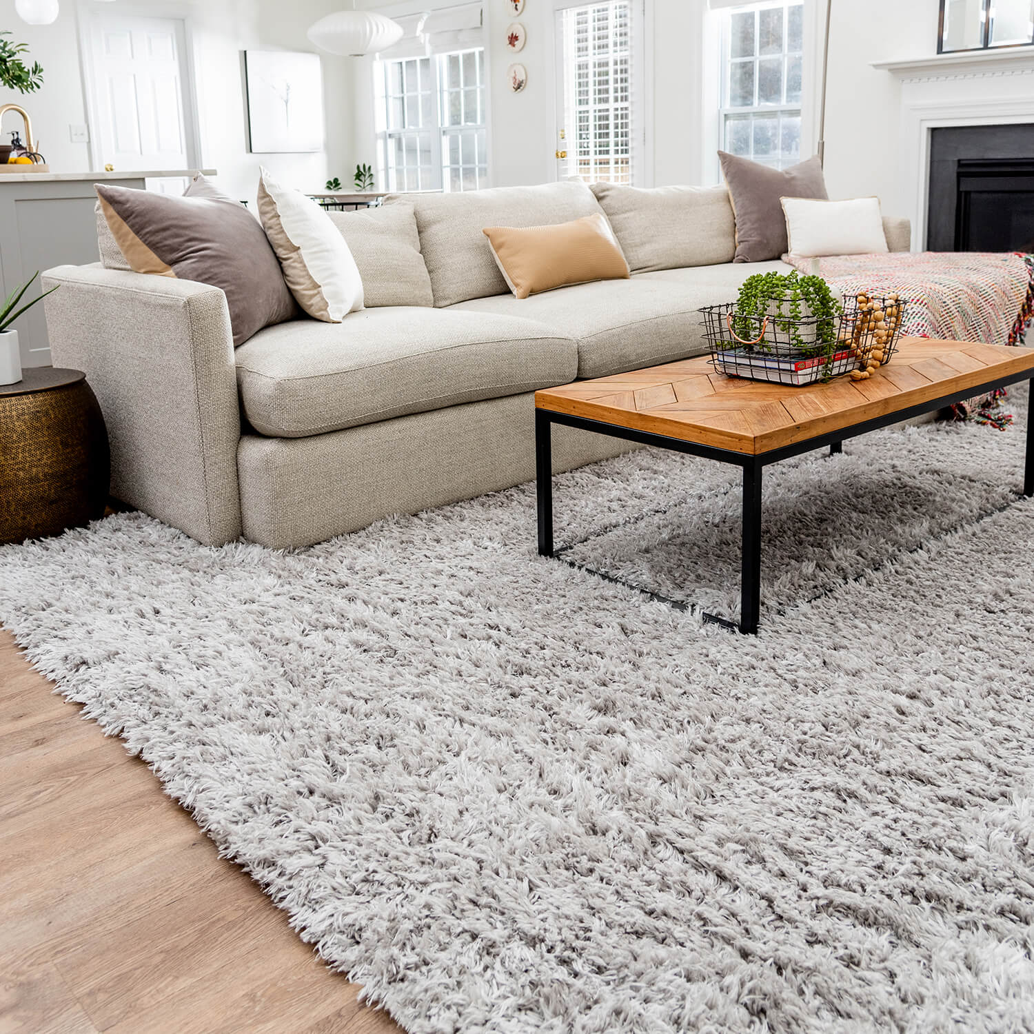 living room with modern style shag rug